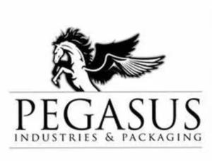 Pegasus Industries | Shelbyville, KY customer spotlight spray-tec roof